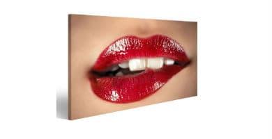 cuadros de labios